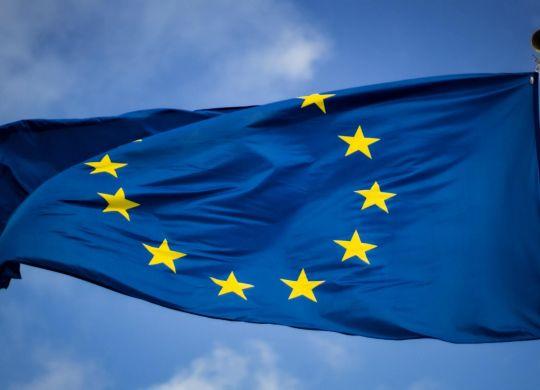 The Data Guardians - Data Flows Beyond Brexit